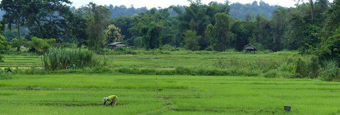 beautiful-chiang-mai