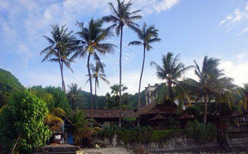 YTT Bali Hotel